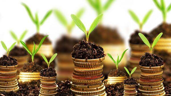 Javajan. Se ha abierto el plazo para solicitar las subvenciones para empresas del comercio al detalle y servicios