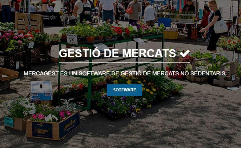Diseño y programación de una intranet para Mercagest