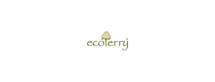 Creación de una tienda online para Ecoterry