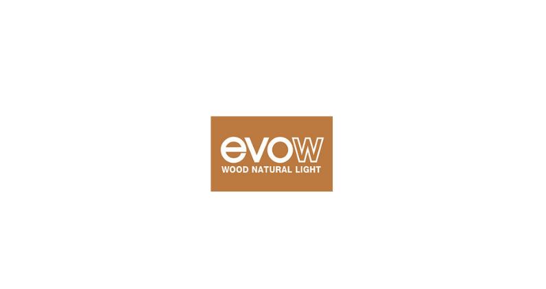 Página web para Evolución Windows – Evow